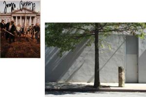 La Naturaleza y el Valor Simbólico en Arte y Arquitectura