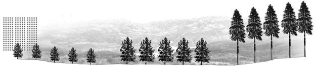 Laboratorio-de-elementos-de-paisajes-01