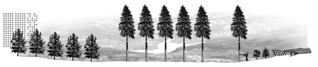 Laboratorio-de-elementos-de-paisajes-02