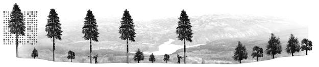Laboratorio-de-elementos-de-paisajes-03