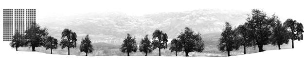 Laboratorio-de-elementos-de-paisajes-04