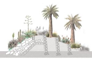 Paisajes Xerofitos: Diseño del Paisaje en Zonas Aridas