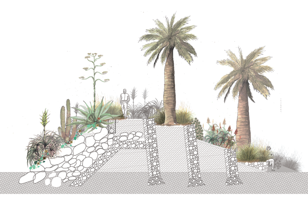 Paisajes-xerofitos-01