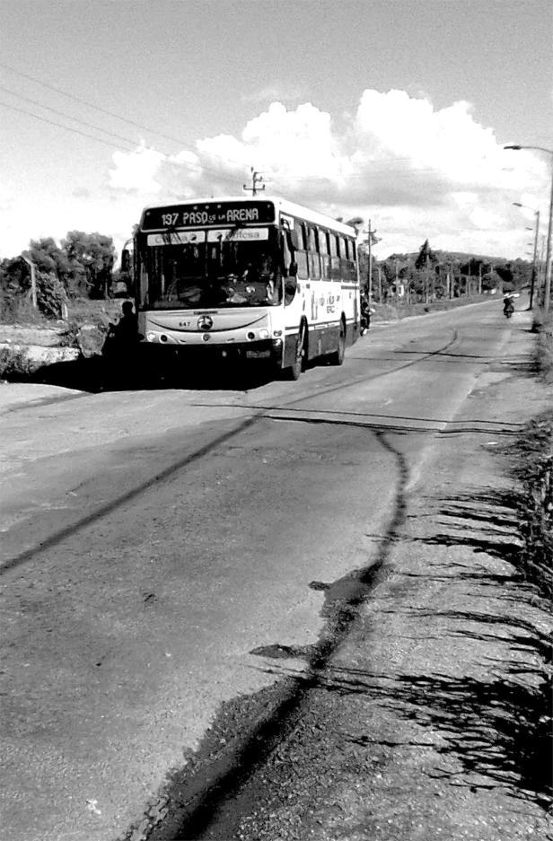 Tesis-de-Doctorado-Figueroa-01